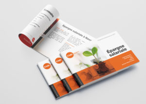 Brochure - CFDT